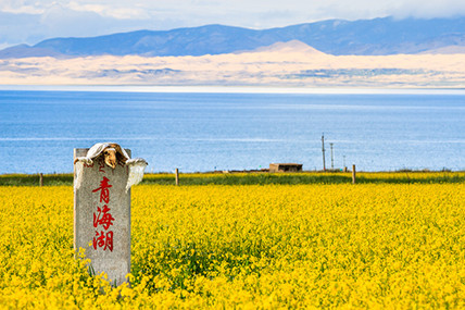 醉美青海 精华6日游,青海湖·茶卡盐湖·塔尔寺·特色藏寨·袁家村