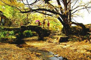 贵阳旅行社-有杏·遇见你-贵州6日游-贵州旅游小众景点
